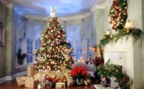 Секреты украшения елки в преддверии Нового года