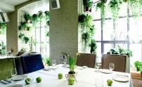 Комнатные растения: правила гармонии